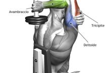 Workout - triceps