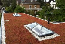 Sedum  dak uitbouw