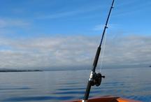 Fishing (get hooked :) / by Amanda Staron