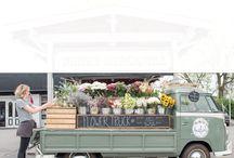 flori mobile