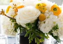 Flowers / Flowers / by Hawaii Love