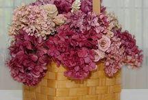 farbenie hortenzii