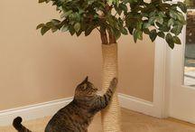 Деревья для кошек