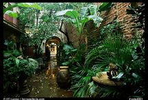 Garden~teaches patience and trust