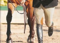 Equestrian Gifts For Him / Gifts for the male equestrian