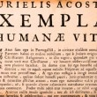Campaign for Humanae Vitae