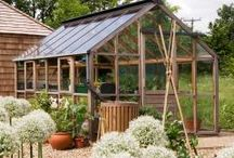Classic Greenhouse Collection / Our classic greenhouse collection
