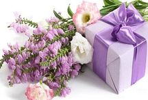 Sentiment Delivery Services in Islamabad | Delivery6