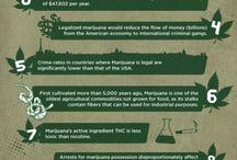 Legalización Terapéutica