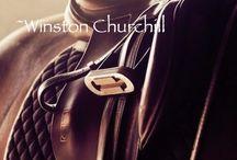 Horses & dressage