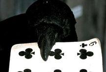 crow [stan]