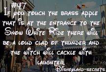 Stuff to do while at Disneyland / by Katelyn Valles