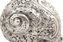 Muszle i sztuka (Shells and art)