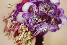 Bouquet Bliss / by Ebony Peoples-Wordlaw