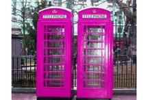 pink dazzlers