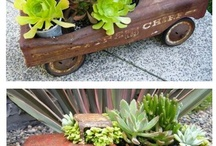 yard ideas / by Louise Fralie