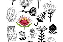 protea designs