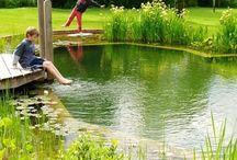 rybníky a voda kolem domu