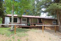 Frank's Cabin / Historic Red River Cabin with modern day amenities, play ground; located close to ski area and river!!!