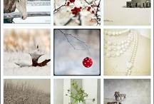 winter wonderland / by Norma Parker