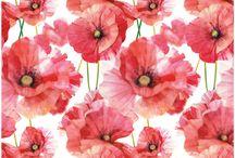 kwiaty tła