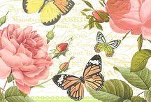 Motyle i kwiaty - butterfllies and flowers.