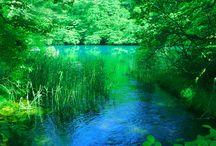 Japanese gardens / Gardens in Japan