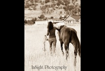 My Love for Horses / by Mona @ Healthy Homesteading