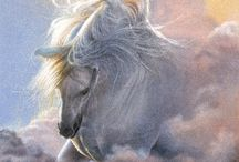 Horse art / by Eleanor Wojnar