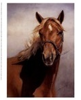 Animals / I am an animal lover... but my passion is horses and large dogs. / by Chyrle Parnell