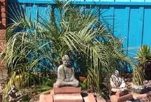 Outside and garden ideas
