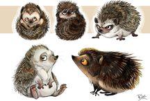 Animal Design: Hedgehogs