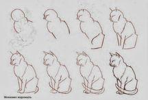 Art draw realistic cats