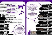 Pets & Travel