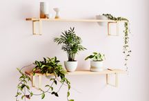 Indoor Planters and Botanics