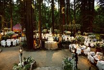 Woods Wedding