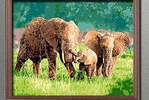 12. August 2017 Welttag des Elefanten