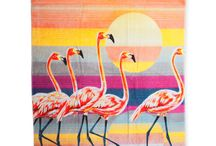Flamingos / by Caron Querker