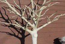Cosimo & the trees