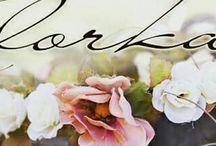 flowers....by Kolorka