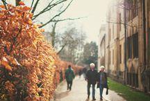 Fall Photography Inspiration / Autumn, Fall Season, fashion, photography, nature.