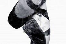 Ballet bullet