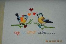Kalpli kuçlar