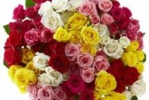 Flower Delivery in Noida Online for your Occasions at Zoganto / Flowers to Noida online from renowned florist in Noida Zoganto to send through fast home delivery. Free Shipping.