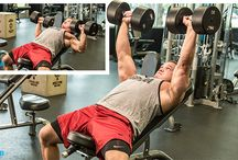 Muscu - Bodybuilding.com - Routine advice