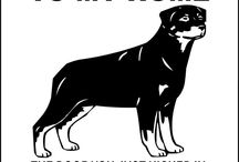 Dogs / #animal #dog #puppy