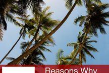 Cestování-Srí Lanka