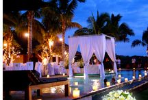 Ccy events in Bali