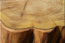 Furniture / Design bútor, organikus fa bútor, dizájn bútor, loft dizájn, indusztriális bútor