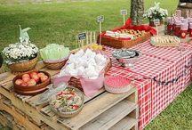 festa Lyju picnic
